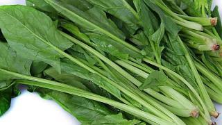 老人痛风不能吃菠菜?